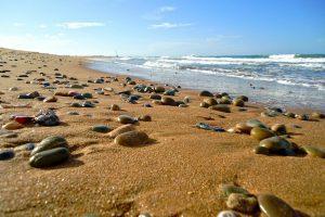 beach shooting morocco