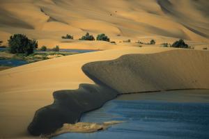 Producer Morocco desert