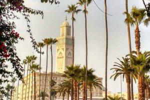 Casablanca 12