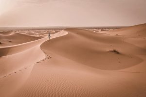 Sand Dunes 04