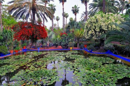Interiors & Garten
