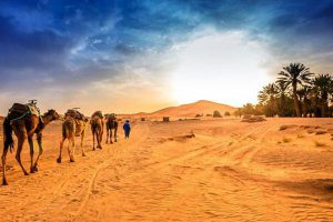 Sand Dunes 09