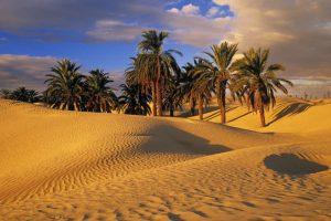film sahara morocco