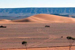 Sand Dunes 19